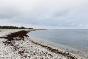 N IMG 063 2341 Furillen Gotland
