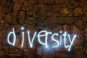 diversity 25x38